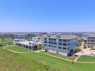 Galveston Condo/Townhouse For Sale: 4151 Pointe West Drive #203