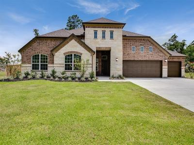 Single Family Home For Sale: 13715 Nubenbrook Lake Drive
