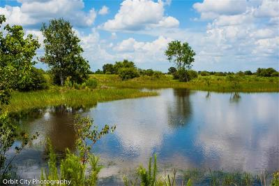 Residential Lots & Land For Sale: 2411 Mound Road