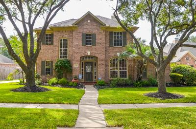 New Territory Single Family Home For Sale: 6338 Cool Water Drive