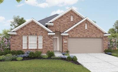 Katy Single Family Home For Sale: 3823 Lumber Springs Ln