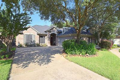 Houston Single Family Home For Sale: 1506 Orchard Park Drive