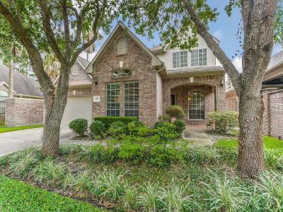 Houston Single Family Home For Sale: 5407 Lake Place Drive