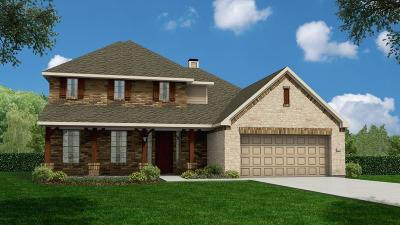 Katy Single Family Home For Sale: 28007 Round Moon Lane