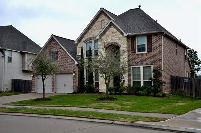 Pearland Single Family Home For Sale: 1997 Biscayne Lake Drive
