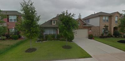 Pearland Single Family Home For Sale: 2613 Golden Creek Lane