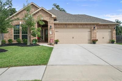 Houston Single Family Home For Sale: 18130 Millau Viaduct Way
