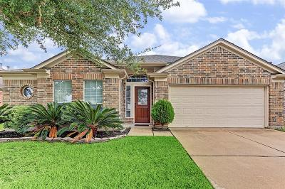 Katy Single Family Home For Sale: 20547 Upland Fair Lane