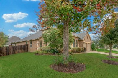 Conroe Single Family Home For Sale: 115 Autumn Forest Lane