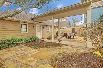Houston Single Family Home For Sale: 723 Oxford Street