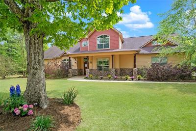 Montgomery Single Family Home For Sale: 395 Lure Cove
