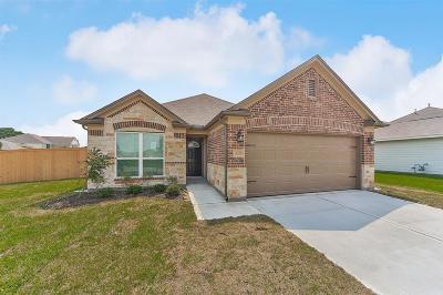 Rosenberg Single Family Home For Sale: 3026 Silverhorn Lane
