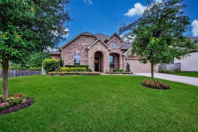 Willis, Montgomery, The Woodlands, Conroe, Shenandoah, Spring Single Family Home For Sale: 162 Hunter Hollow Drive
