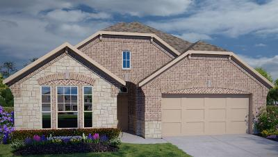 Spring Single Family Home For Sale: 4803 Creekside Haven Trail