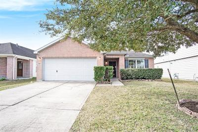 Sugar Land Single Family Home For Sale: 9518 Abigail Drive