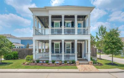 Spring Single Family Home For Sale: 9 Dobbs View Lane