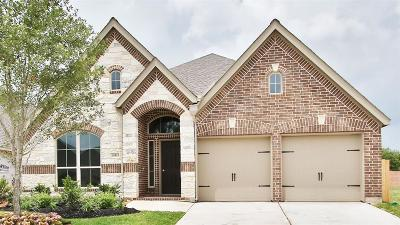 Pearland Single Family Home For Sale: 13831 Arbor Meadows Lane