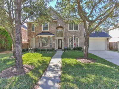 Katy Single Family Home For Sale: 4602 Stackstone Lane