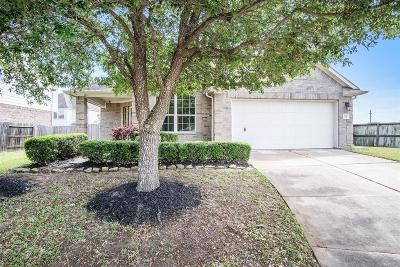 Pearland Single Family Home For Sale: 2117 Crestwind Court