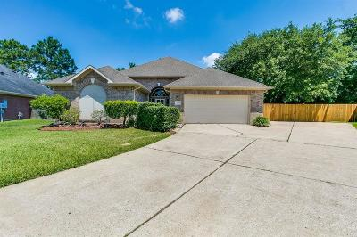 League City Single Family Home For Sale: 110 Briarwood Court