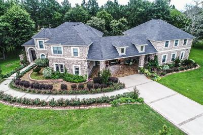 Montgomery Single Family Home For Sale: 8465 Majestic Lake Court