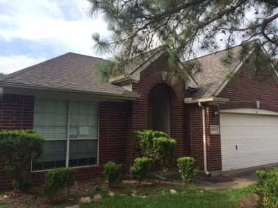 Houston Single Family Home For Sale: 9507 Willow Trace Court