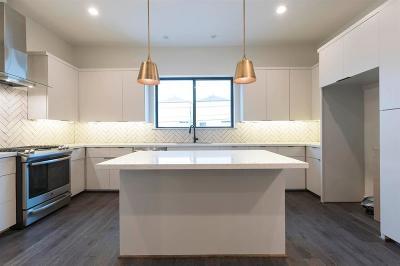 Houston Single Family Home For Sale: 4207 Allen Street