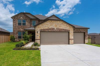 Texas City Single Family Home For Sale: 2802 Bernadino Drive