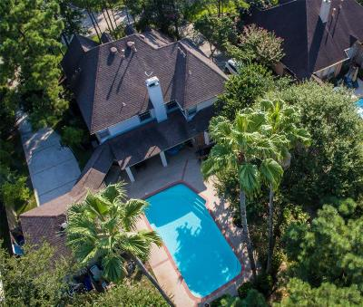 The Woodlands Single Family Home For Sale: 22 Lost Pond Circle