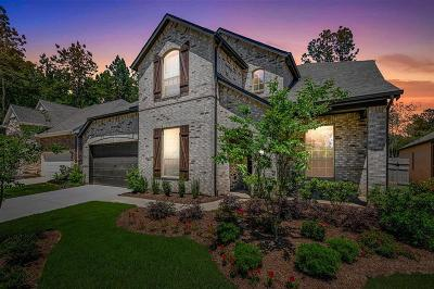 Conroe Single Family Home For Sale: 17465 Chestnut Cove Drive