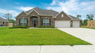 Baytown Single Family Home For Sale: 15319 Icet Creek Avenue