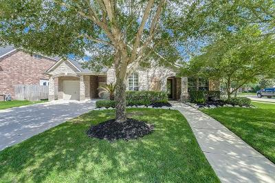 Katy Single Family Home For Sale: 21402 Dolan Fall Lane