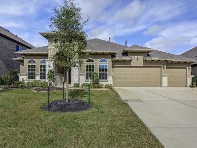 League City Single Family Home For Sale: 4813 Isla Canela Lane
