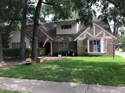 Memorial Single Family Home For Sale: 12302 Rip Van Winkle Drive