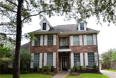 Sugar Land Single Family Home For Sale: 4603 Meadow Green Drive