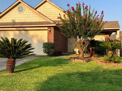 Tomball Single Family Home For Sale: 19718 Waterflower Drive