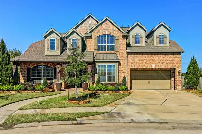 Friendswood Single Family Home For Sale: 1000 Bolivar Point Lane