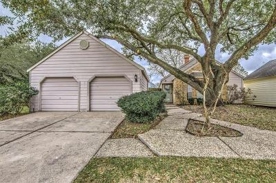 Houston Single Family Home For Sale: 16703 Holly Trail Drive