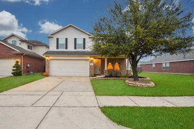 Katy Single Family Home For Sale: 4518 Hall Croft Chase Lane