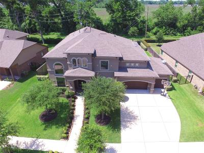 Missouri City Single Family Home For Sale: 55 W High Bank Drive