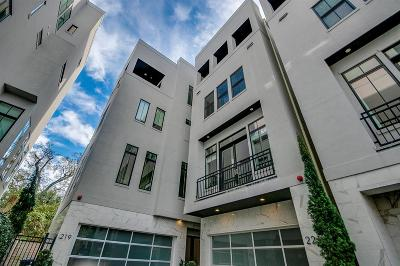 Houston Single Family Home For Sale: 221 Portland Street
