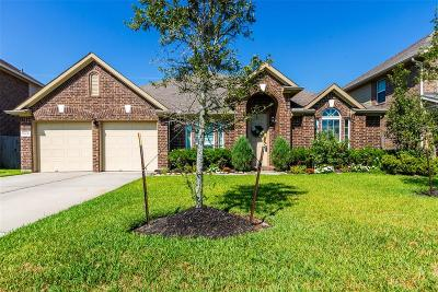 Tomball Single Family Home For Sale: 13431 Cameron Reach Dr Drive
