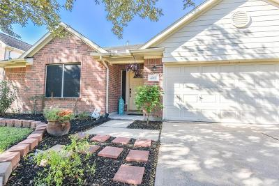 Pearland Single Family Home For Sale: 4202 Seminole Drive