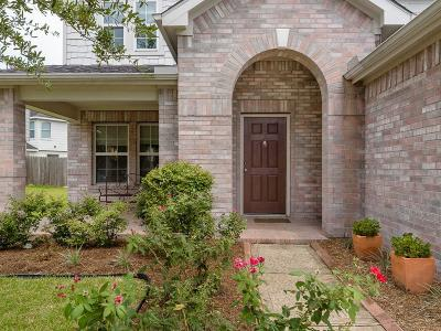 Tomball Single Family Home For Sale: 19814 Rippling Brook Lane