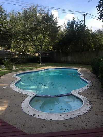 Houston Single Family Home For Sale: 9323 Braes Bayou Drive