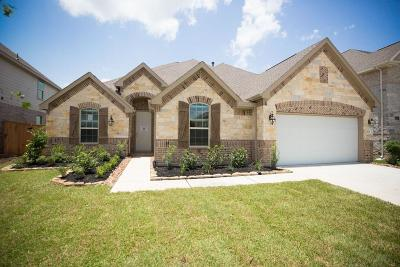 Tomball Single Family Home For Sale: 21715 Albertine Drive