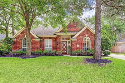Tomball Single Family Home For Sale: 16210 Chestnut Trail