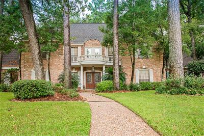 Spring Single Family Home For Sale: 9311 Tranquil Park Drive
