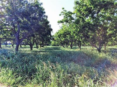 La Grange TX Farm & Ranch For Sale: $1,125,000