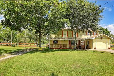 Alvin Single Family Home For Sale: 17494 F A A Road